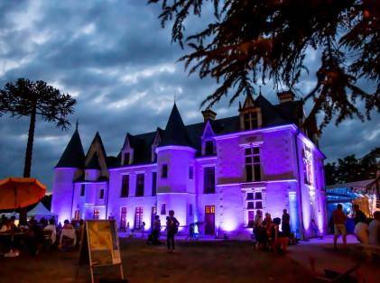 chateau_cange_ville_saint_avertin (7)